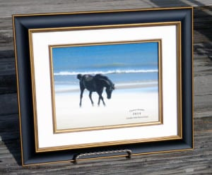 """Two Socks. Framed.Photo by Karen Fonteneau.Photo Size: 8.5x11""""Frame Size: 15x18""""UV GlassAcid Free Materials Two Socks. 2014 CWHF Charter Member Photo. Photo by Karen Foneneau of Attleboro, MA. This photo is the cover of our 2014 CWHF Calendar, which is dedicated to the memory of Two Socks. In a tragic accident that haunts us to this day, Two Socks, a strong and graceful stallion, was hit by a car on the beach north of Corolla, NC. He died on Memorial Day weekend of 2012."""